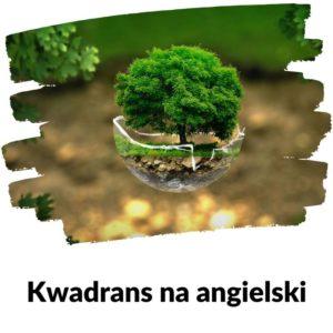 Ekologia - Lekcja 92 Kwadransu na angielski